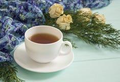 杜松茶与干玫瑰的和分支  免版税库存照片