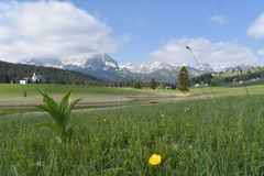 杜米托尔国家公园的春天全景 免版税库存照片
