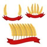 束与丝带,框架的麦子 平的样式 有机食品 免版税库存图片