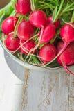 束与水下落的新鲜的有机红色萝卜在白色木庭院厨房用桌阳光的铝碗 免版税库存照片