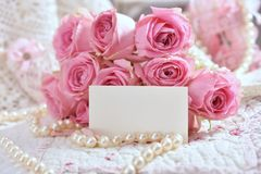 束与空插件的桃红色玫瑰招呼的文本的 免版税库存图片