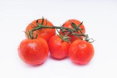 束与水下落的新鲜的蕃茄 库存照片