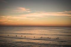 束五颜六色的日落的等待完善的波浪, capbreton,法国的大西洋冲浪者 免版税库存照片