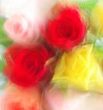 束五颜六色的玫瑰 免版税图库摄影