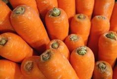 束充满活力的颜色红萝卜,背景的选择聚焦 免版税库存图片