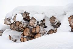 束几本被锯的桦树日志,盖用雪大层数在冬天 免版税库存照片