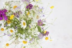 束各种各样的颜色夏天狂放的草甸floweres在灰色b的 库存照片