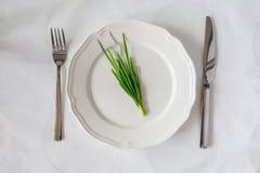 束在一块空的板材的新鲜的草本有刀子和叉子的 饮食 库存图片