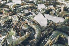 束在地方鱼市上的新鲜的虾在Jimbaran 图库摄影