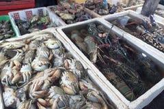 束在地方鱼市上的新鲜的龙虾在Jimbaran,巴厘岛 免版税库存照片