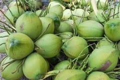束在地板上的新鲜的椰子 免版税库存照片