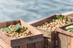 束在木板箱库存的龙眼热带水果在印度尼西亚市场上 选择聚焦 库存图片