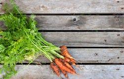 束在木背景的新鲜的红萝卜 免版税库存照片