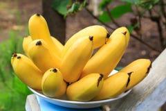 束在板材的柬埔寨成熟香蕉 图库摄影