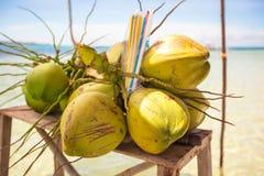 束在热带海岛上的椰子 免版税库存图片