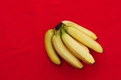 束在红色背景的香蕉 新鲜的有机香蕉,在厨房用桌上的新鲜的香蕉 免版税库存图片