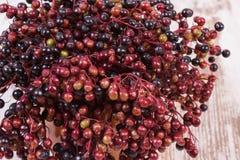 束在老木背景,健康食物的新鲜的接骨木浆果 免版税库存照片