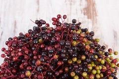 束在老木背景,健康食物的新鲜的接骨木浆果 库存图片
