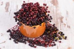 束在老木背景,健康食物的新鲜的接骨木浆果 库存照片