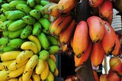束在绿色,红色和黄色的香蕉 免版税库存图片
