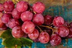 束大有机食用葡萄红色地球 库存照片