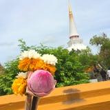 束寺庙墙壁的莲花和万寿菊infornt在泰国;集中于与迷离bokeh塔和树backgro的花 图库摄影
