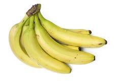 束成熟香蕉 免版税库存图片