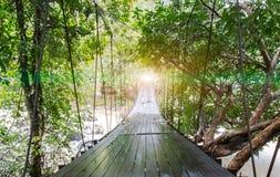结束或球门线概念 光在垂悬木桥的透视结束时作为走道与树一起的各种各样的类型 免版税库存照片