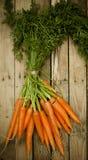 束新鲜的有机红萝卜在市场上 库存照片