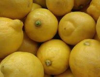 束新鲜的柠檬 库存照片