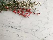 束新鲜的玫瑰和白色drok染料木属从荷兰白色和灰色大理石桌面背景的,顶视图 库存照片