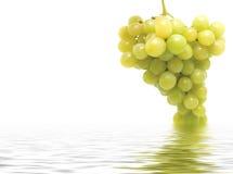 束新鲜的葡萄 免版税库存图片