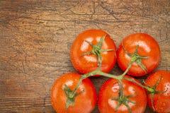 束新鲜的蕃茄 库存照片