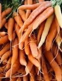 束新鲜的被收获的红萝卜 免版税库存照片