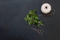 束新鲜的绿色薄菏 免版税库存图片