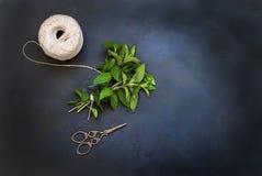 束新鲜的绿色薄菏 图库摄影