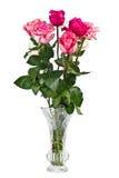 束桃红色玫瑰花瓶 免版税库存图片