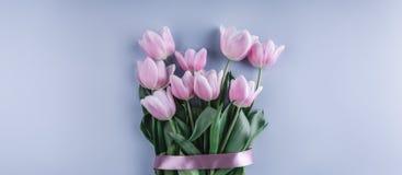束桃红色郁金香在蓝色背景开花 等待的春天 免版税库存图片