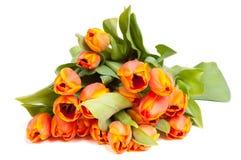 束橙色郁金香黄色 库存图片
