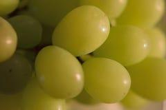 束特写镜头在绿色葡萄的 免版税库存照片