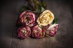 束玫瑰凋枯了 免版税库存照片