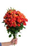束红色玫瑰 库存图片