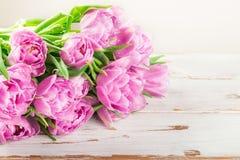 束美丽的紫色郁金香 库存图片