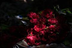 束美丽的花 库存图片
