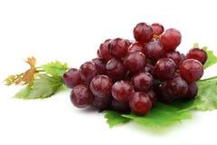束葡萄叶子红色一些 库存照片