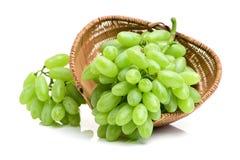 束葡萄绿色例证可实现的向量 图库摄影