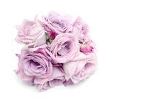 束蓝色玫瑰和空的空间 库存图片