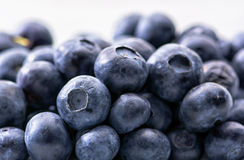 束蓝莓 库存照片
