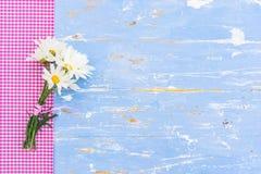 束雏菊延命菊在与拷贝空间的土气背景开花 库存照片