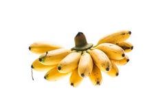束香蕉 免版税库存图片